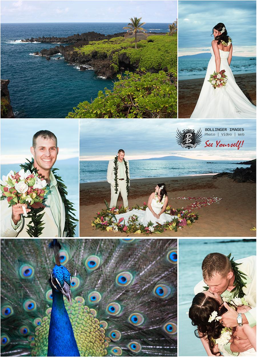 4  Destination – Maui! 4